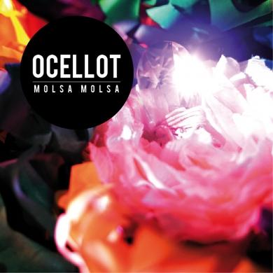 Ocellot_molsa_molsa