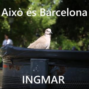 """""""Això és Barcelona"""" nou single i videoclip d'Ingmar Kroonenberg"""